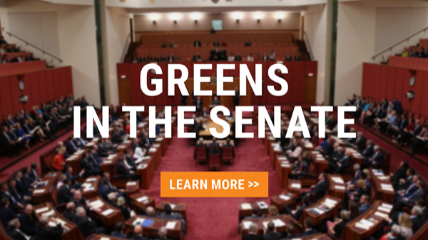 Greens in the Senate: Learn more