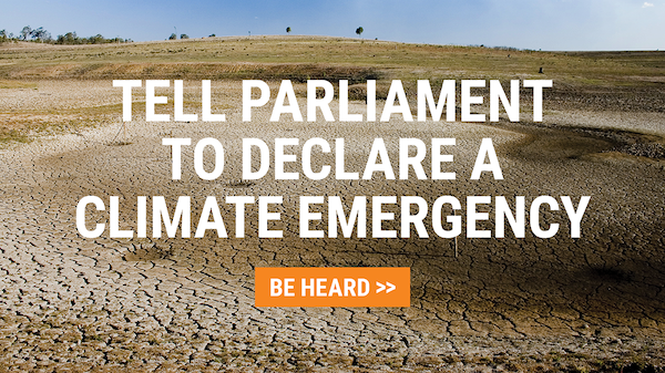 Tell Parliament to declare a Climate Emergency