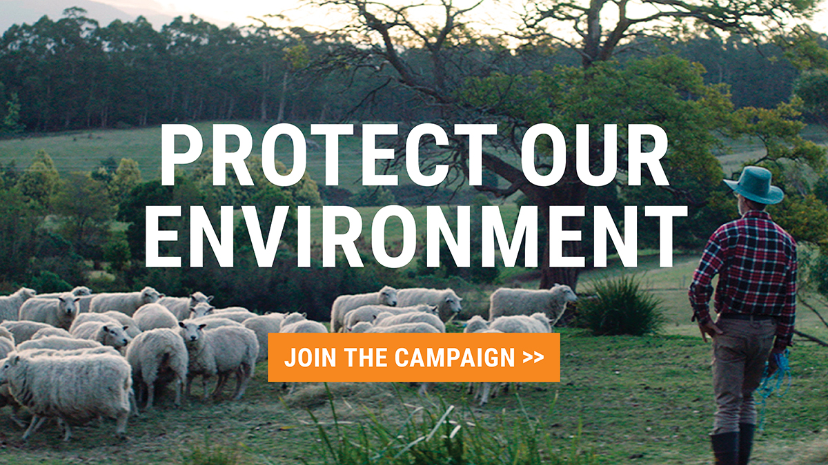 Protect our environment: Join the campaign