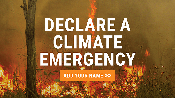 Join Our Campaign To Declare A Climate Emergency