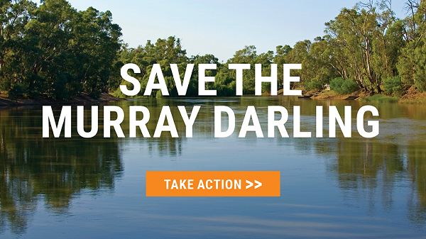 Join Our Campaign To Save The Murray Darling