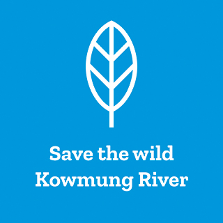 Save the Kowmung river