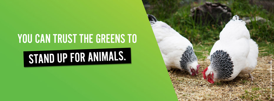 You can trust the Greens to stand up for animals.