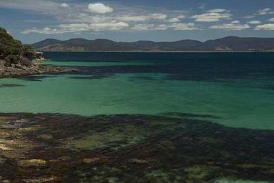 Coastal Marina