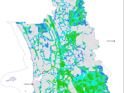 Mapping the urban forest