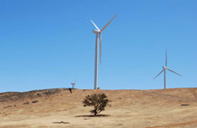 Wind turbines in dry landscape
