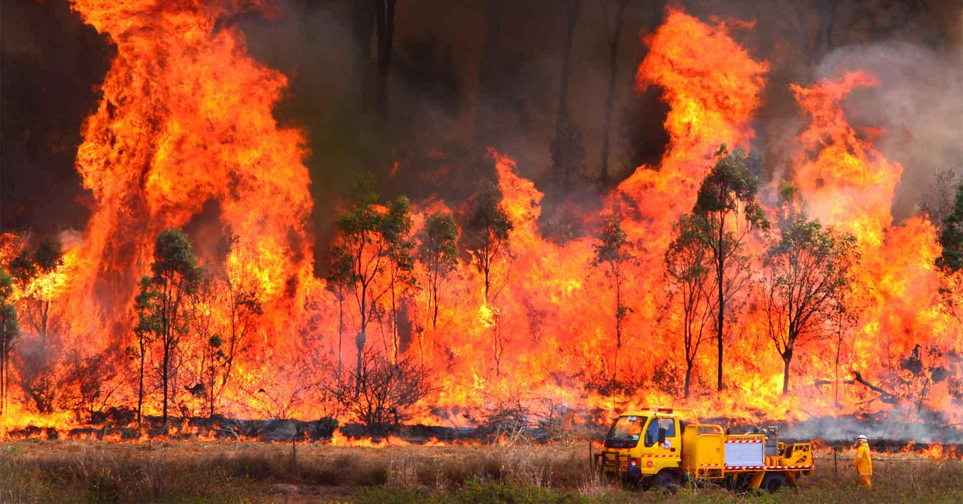 Living with global warming | Australian Greens