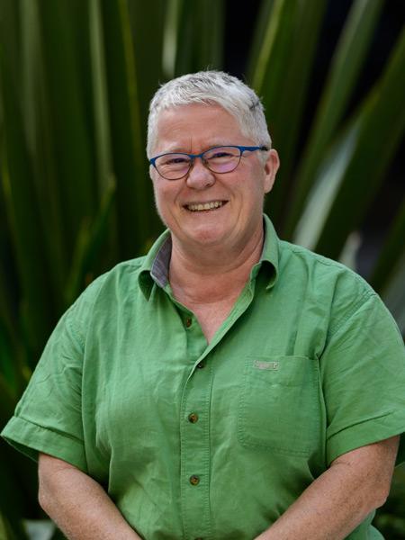 Giz Watson, Australian Greens co-convenor