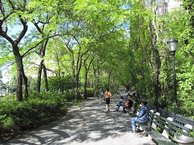 Protecting, connecting and regenerating green spaces