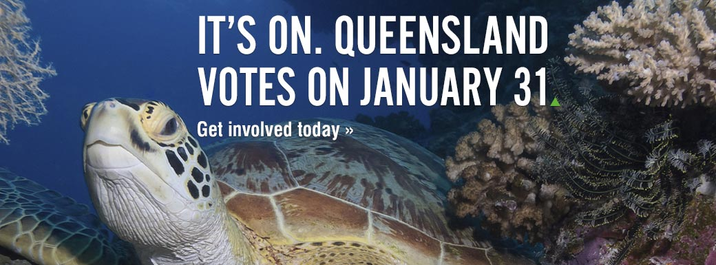 Queensland election is on: January 31