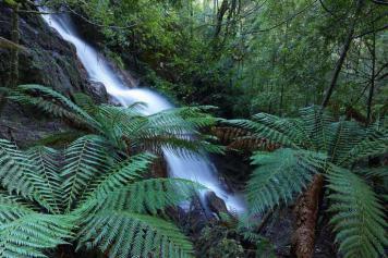 Mt Lindsay, Tasmania