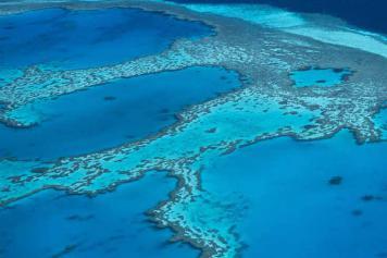Hardy Reef