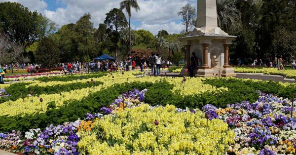 Carnival of flowers in Queens Park, Toowoomba.