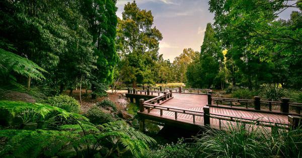 Ipswich-Lockyer