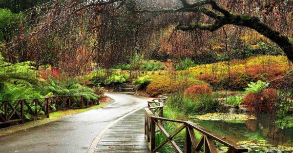 The Greens Dandenong Ranges Branch