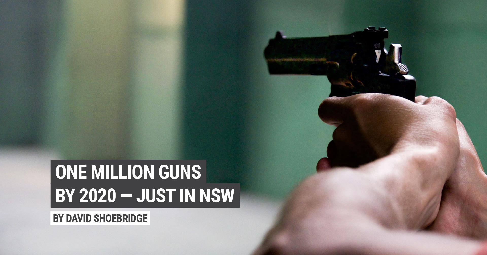 image of a hand holding a gun with the text 1 million guns by 2020, by David Shoebridge