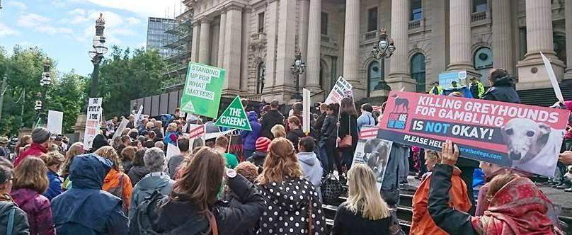 Shut it down greyhound rally